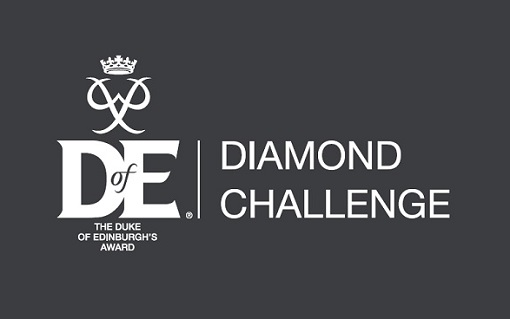 diamondchallenge